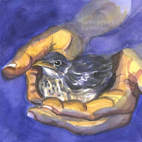 eye-sparrow
