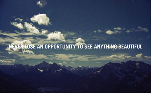 Never-lose-an-opportunity-to-see-something-beautiful
