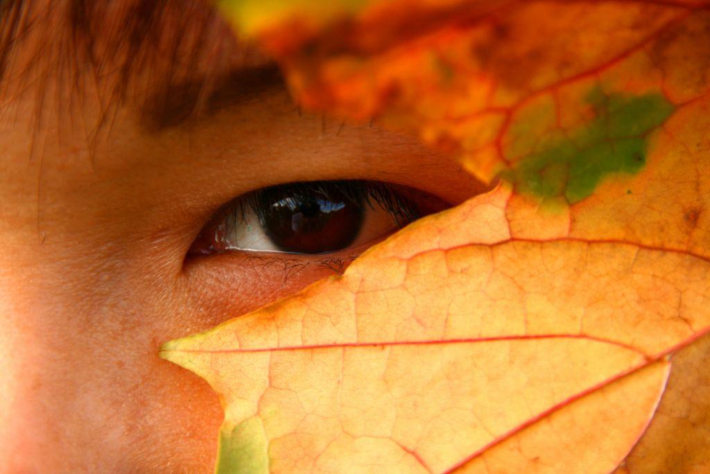 eye-peering-through-leaves