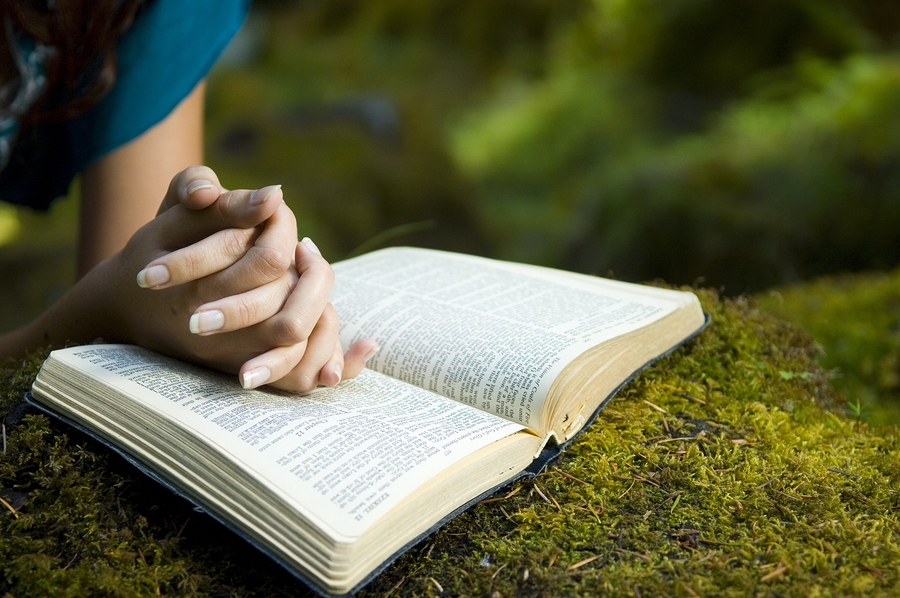 Young woman reading bible by stream in summer